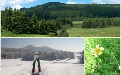 UZANA AREA-BEAUTIFUL IN EVERY SEASON