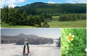 Местност Узана – красива през всеки сезон